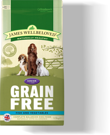 Grain Free Dog Food Without Eggs