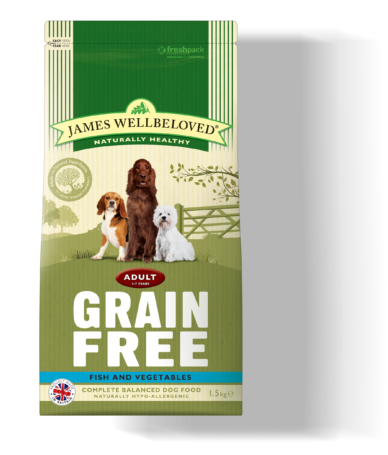 Why Grain Free Cat Food